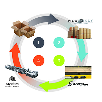 Sustainability Life Cycle of Corrugated Brown Boxes